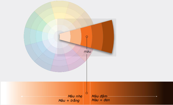 Vòng tròn màu sắc - travelpx.net