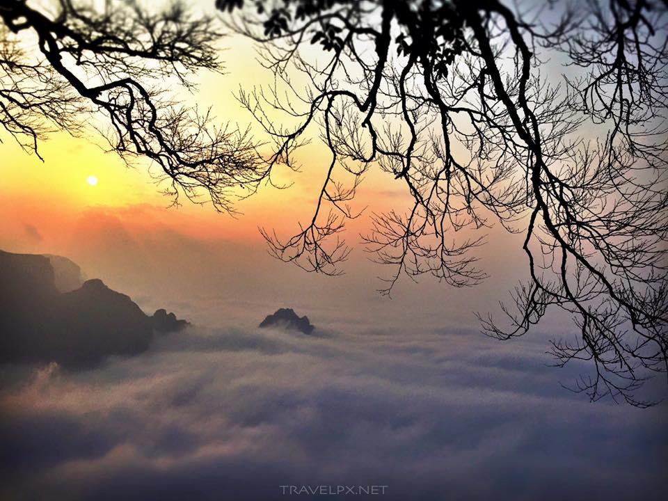 Phuong Hoang Co Tran - Truong Gia Gioi - Travelpx.net-18