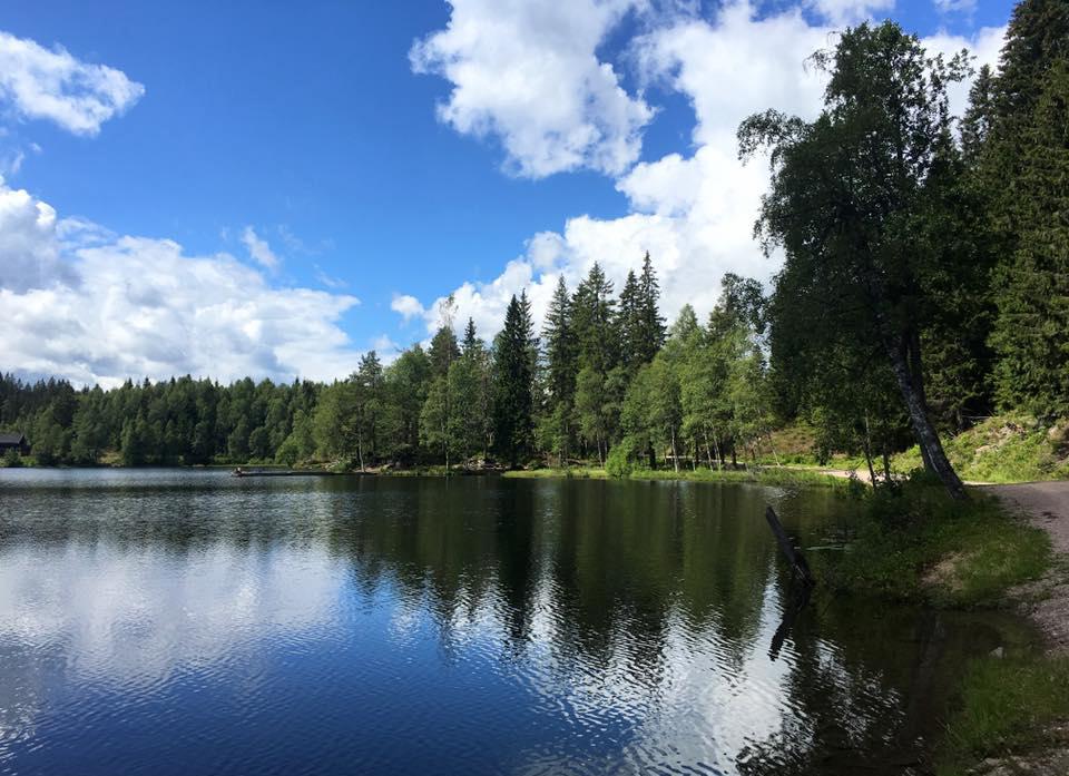Công viên Frogner nằm ngay cạnh Oslo