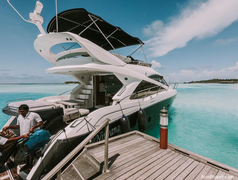 Speedboat du lich Maldives